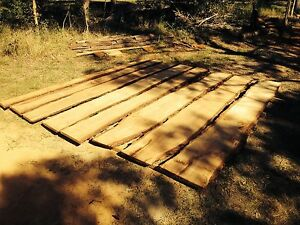 TIMBER SLABS IRONBARK FROM $100 Elimbah Caboolture Area Preview