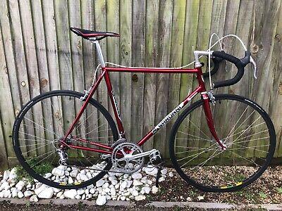 Saroni vintage 1980 Racing bike - restored Campagnolo and Cinelli