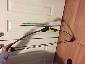 Lil banshee compound bow