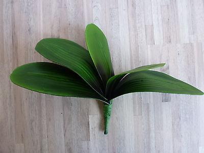 Orchideenblatt Orchideenblätter Orchidee Phalaenopsisblätter 327000-50 F61