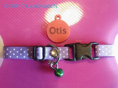 Katzen Tier Halsband mit Namensschild lasergarviert *LILA POINTS*