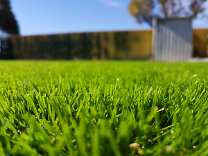 synthetic lawn  artificial grass    fake lawn, Beldon Joondalup Area Preview