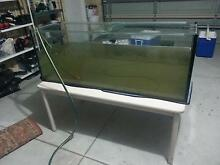 4ft fish tank on stand , wt pump & large black shark Beechboro Swan Area Preview