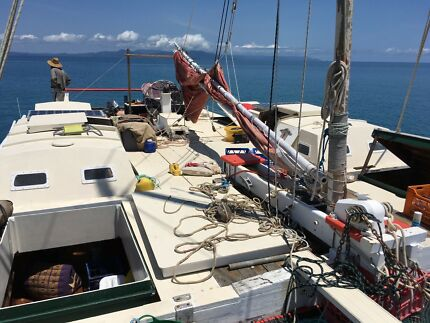 Wharram Catamaran 50ft