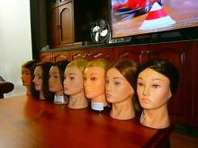 hairdressing training mannequin heads or xmas present for girls Rydalmere Parramatta Area Preview