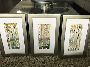 Set of 3 silver framed pictures