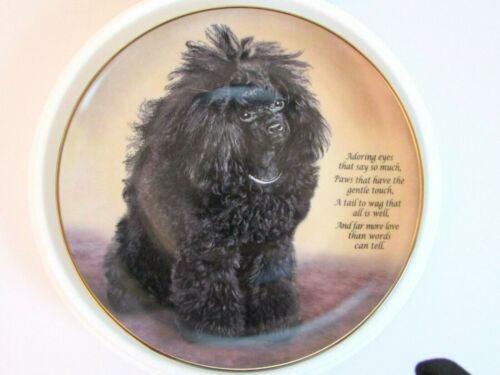 "Cherished Poodles Plate by The Danbury Mint  - "" Adoring Eyes "" Mint/Rare"