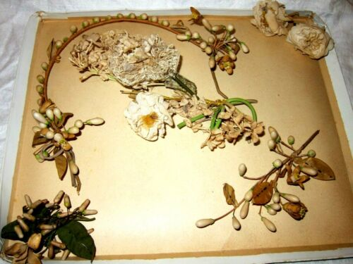 Antique French Waxed Blossom Couronne & Corsages x 3