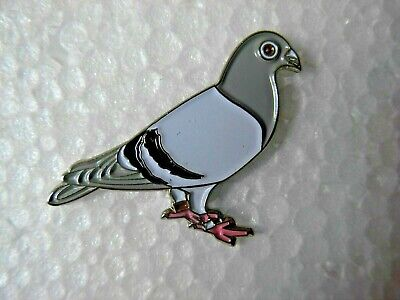 Pigeon pin badge. Racing Pigeon. British wildlife bird. Metal Enamel