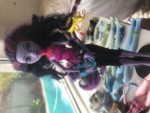 Monster high dolls (15)