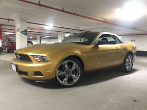 2010 MUSTANG **SAFETIED &E-TESTED**