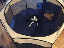 Puppy play pen Jerrabomberra Queanbeyan Area Preview