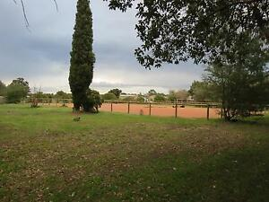 Agistment, Breaking-In & Lessons available - Swan Valley W.A. Middle Swan Swan Area Preview