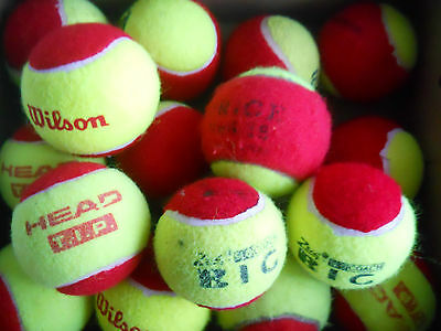 10 Used Red Tennis Balls, Babolat, Head- Ideal for Children or Great Dog Toys