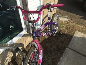 "20"" girls bmx bike. Needs handle grips."