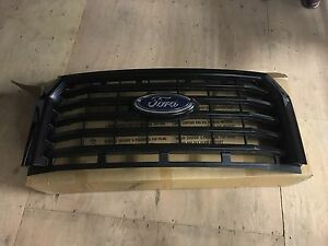 grille f150