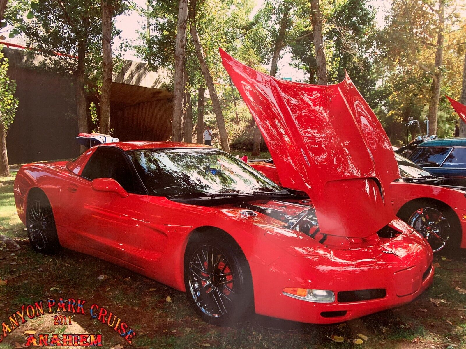 2001 Red Chevrolet Corvette   | C5 Corvette Photo 1