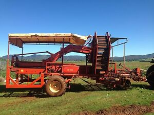Sweet potato harvester Atherton Tablelands Preview