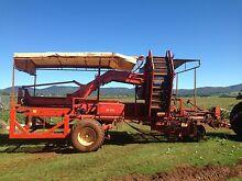 Sweet potato harvester Atherton Tablelands Preview