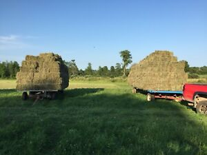 Small square bales of grass hay