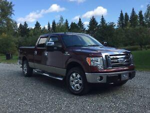 Ford F150 XTL 2009