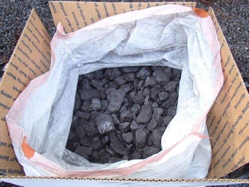 "25# Screened Stoker KY Coal Bituminous Forge Blacksmith Stove Heating 1/2"" - 2"""