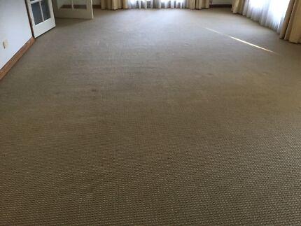 Free wool carpet