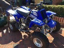 Yamaha Banshee Twin 350 Edition Pearsall Wanneroo Area Preview