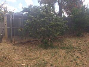 Bird Aviary/ Animal Enclosure Mandurah Mandurah Area Preview