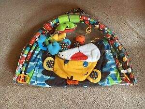 Play mat and gym