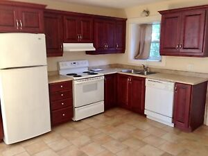 Newly built 3 bedroom apartment downtown
