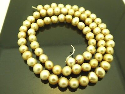 """Genuine Freshwater Pearls Champagne  Almost Round 6mm x 5mm Beads Strand 16"""""""