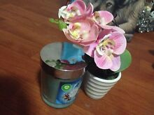 Fake plant and scented candle Keperra Brisbane North West Preview