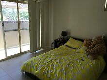 Large unfurnished double room for rent in Croydon Croydon Burwood Area Preview