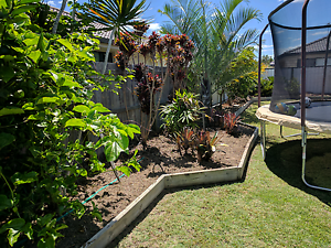 Professional lawn mowing Caboolture South Caboolture Area Preview