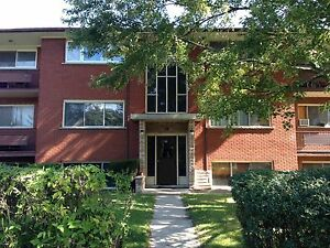 2 Bedroom Upper Floor Apartment for Rent $1000/mo - Stanley Park Kitchener / Waterloo Kitchener Area image 2