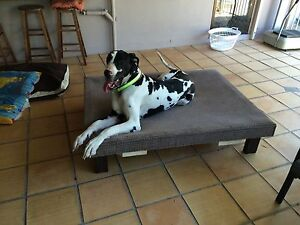 GREAT DANE BEDS MADE BY A 14YR OLD USING CARPET, CRATES & CREATIVITY! Shailer Park Logan Area Preview