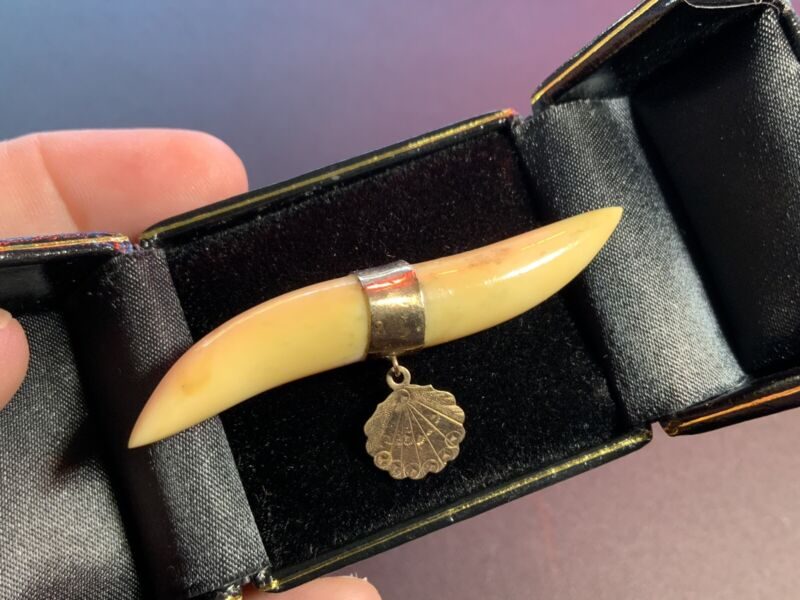 Antique Victorian Gold Filled Bar Pin Brooch With Teeth? Claws? & Charm