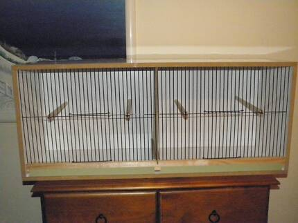 canary large double breeding cabinet with removable divider