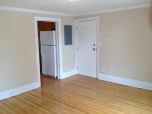 ONE BEDROOM DOWNTOWN GREAT LOCATION