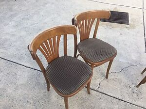Bentwood padded wooden chairs West Perth Perth City Area Preview