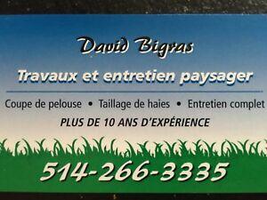 Entretien paysager à Laval