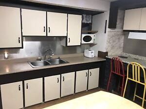 Furnished Back House Downtown NF Utilities Included