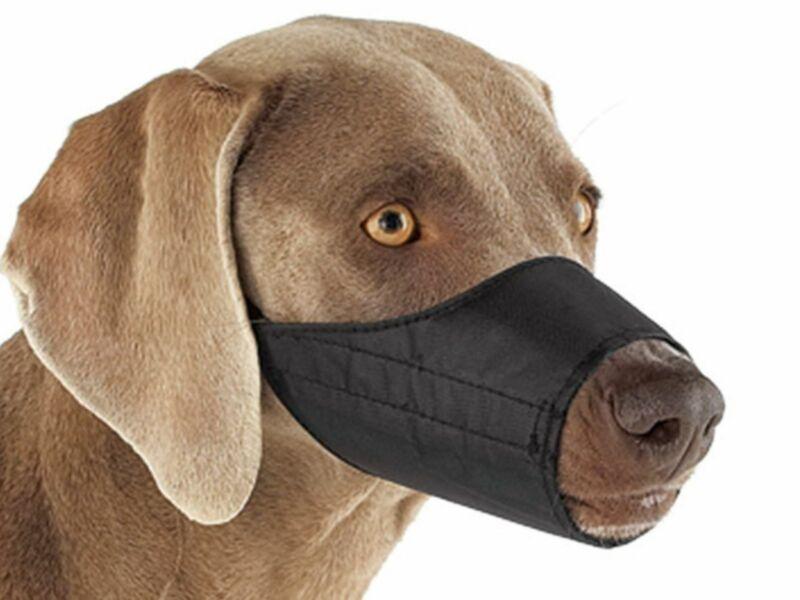 Quick-Release Nylon Dog Muzzle, Large