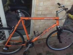"Large 55cm 26"" Avanti Hurricane comp 21spd Mountain Bike Waikiki Rockingham Area Preview"