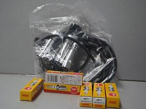 Commodore spark plug leads & NGK spark plugs V6 VN-2, VP VR VS VT VX VY GENUINE