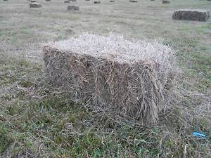 Hay bales (square) Mountain River Huon Valley Preview