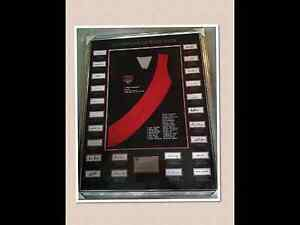 AFL Essendon Team of Champions Framed and signed by all. Springvale South Greater Dandenong Preview