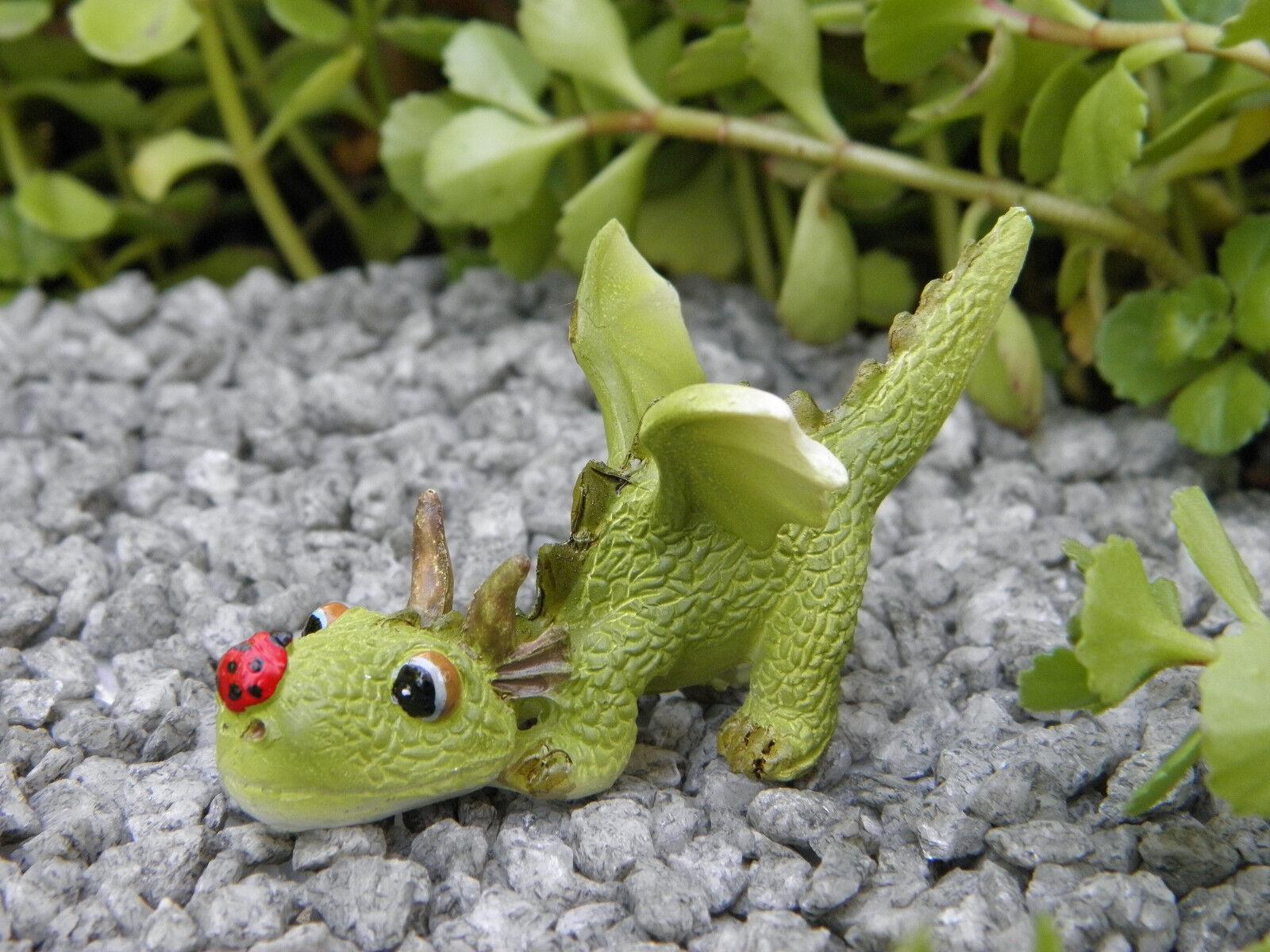 Miniature Dollhouse FAIRY GARDEN ~ Mini Dragon Playing with