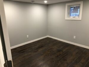 Brand new basement apartment